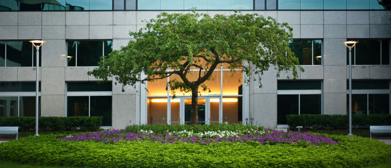 How Quality Landscape Maintenance Helps Your Business Stay Green